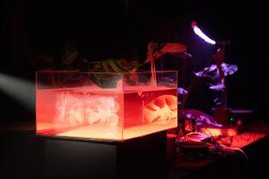 日月潭是一個水泥盒(臺北表演藝術中心提供)
